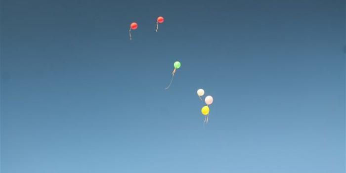 Nima's 17th Birthday